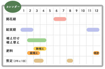 ナンテンの栽培カレンダー