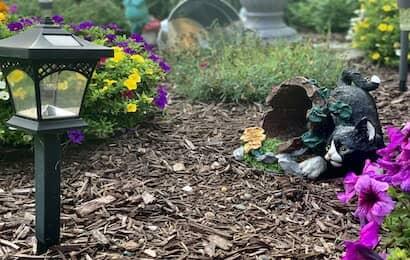 花壇とバークチップ