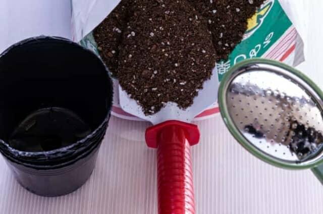 育苗ポットと土とジョウロ