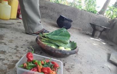 ガーナの野菜