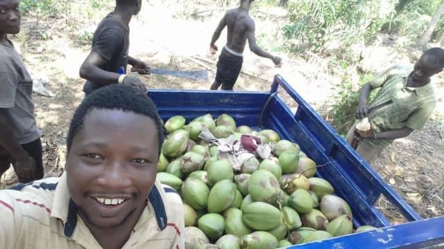 ガーナ農業