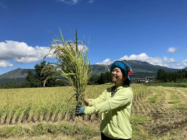 稲を持つ女性