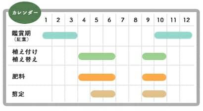 オタフクナンテンの栽培カレンダー