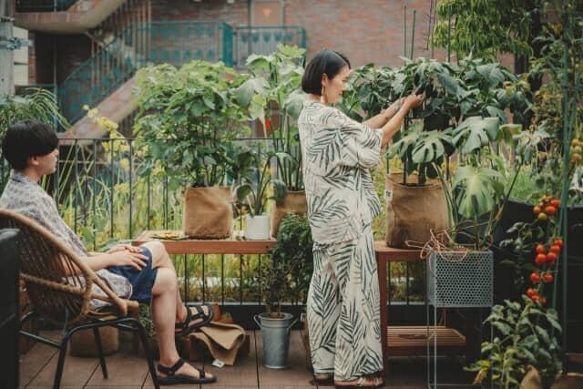 「UETE(ウエテ)」家庭菜園をもっと心地の良い、遊べる菜園へ